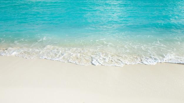 Plage tropicale aux maldives avec lagon bleu