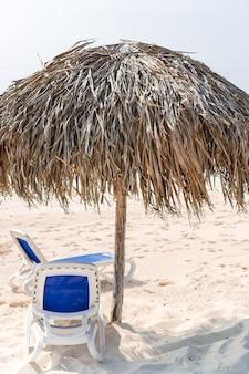 Plage tropicale idyllique avec sable blanc, eau de mer turquoise et grands palmiers