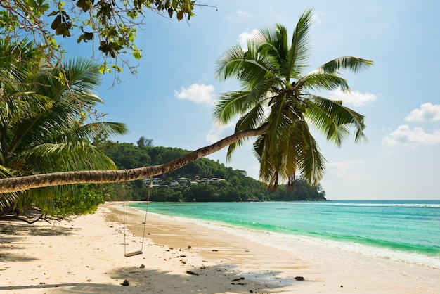 Plage tropicale à l'île de mahé aux seychelles