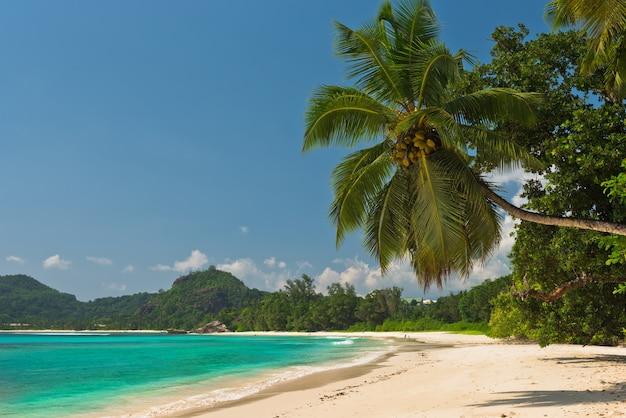 Plage tropicale à l'île de mahé seychelles. prise de vue horizontale