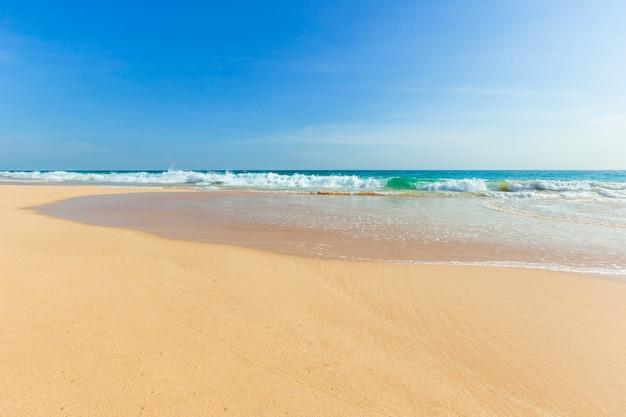 Plage tropicale intacte au sri lanka avec du sable blanc et de l'eau bleue