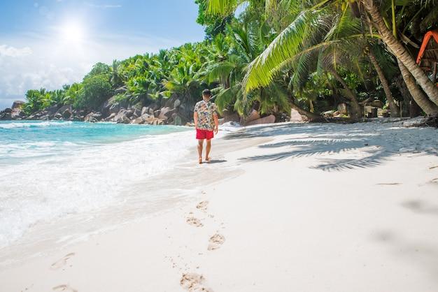 Plage tropicale avec palmiers, eau cristalline et sable blanc