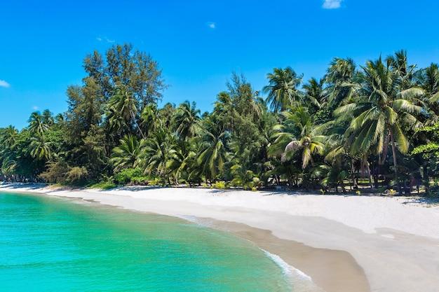Plage tropicale avec palmiers sur l'île de koh samui, thaïlande