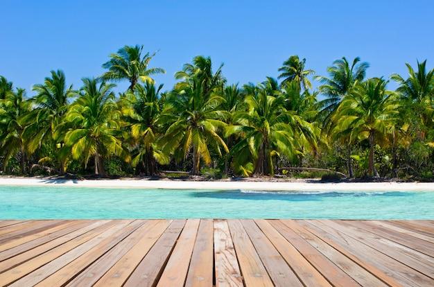 Plage tropicale avec vague de mer sur le sable et les palmiers