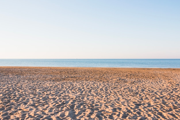 Plage vide avec petites dunes