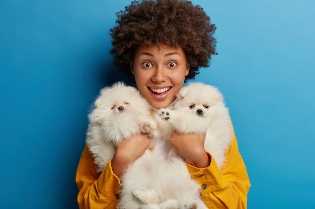 Plan horizontal d'une femme joyeuse bouclée tient fermement deux chiots de race avec fourrure blanche, bénéficie d'un cadeau de petit ami
