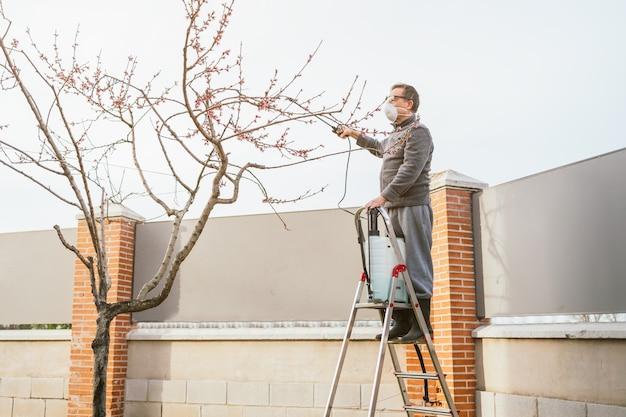 Plan large d'un jardinier pulvérisant un arbre fruitier avec un pulvérisateur debout sur l'échelle