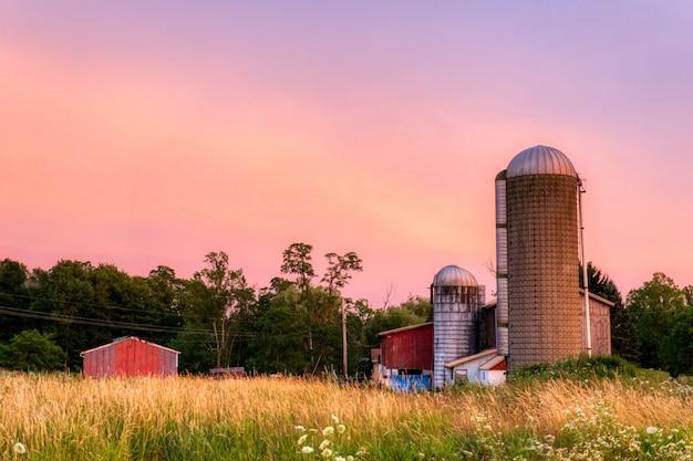 Plan large de silos en béton et de granges dans un champ d'herbe entouré d'arbres