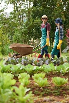 Plan long de deux ouvriers agricoles discutant lors d'une journée de travail dans une ferme