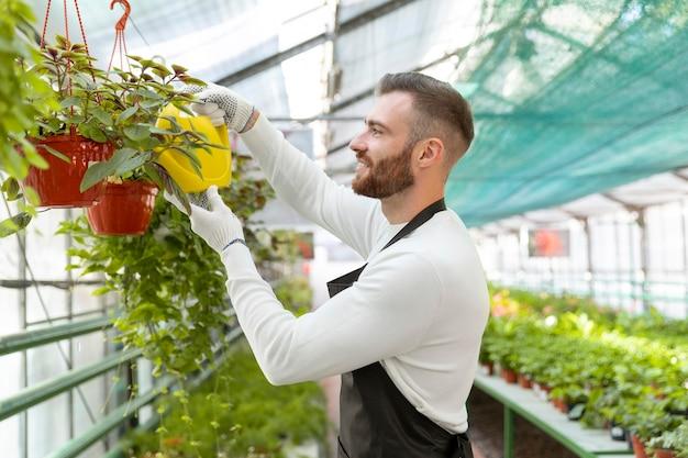 Plan moyen homme arrosant les plantes