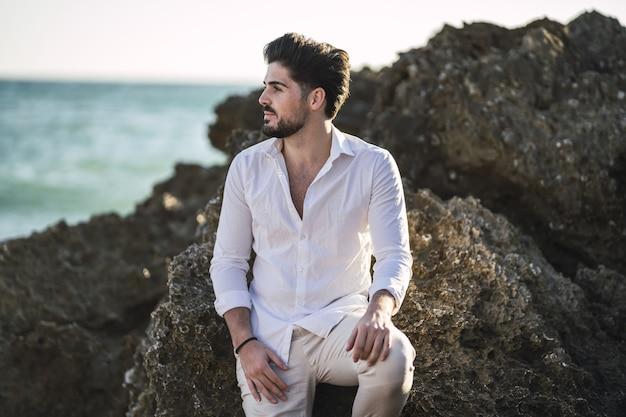 Plan rapproché d'un mâle de brune se penchant sur les falaises sous la lumière du soleil