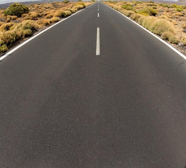 Plan rapproché de la route en voie de disparition à l'infini