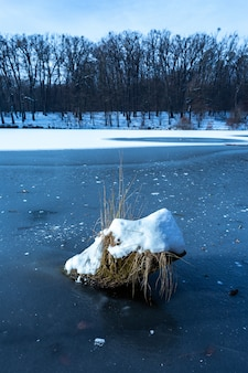 Plan vertical d'un morceau de bois recouvert de neige dans le lac gelé de maksimir, zagreb, croatie