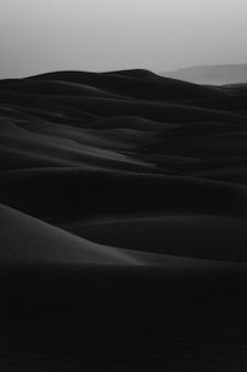 Plan vertical en noir et blanc de l'erg desert