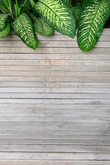 Planche de bois vide et feuille