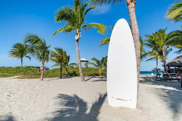 Planche de surf blanche sur la plage de sable. cours de stand-up paddle. magnifique paysage tropical insulaire avec palmiers et sable blanc sur la plage. le concept de sports nautiques.