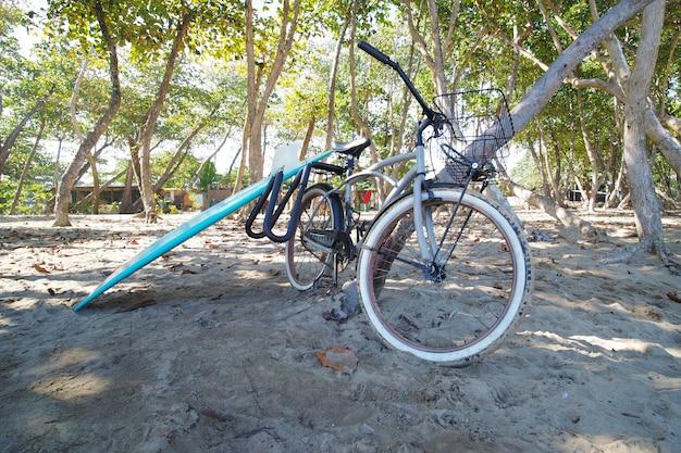 Planche de surf de poisson bleu et vélo sur la plage de sable.