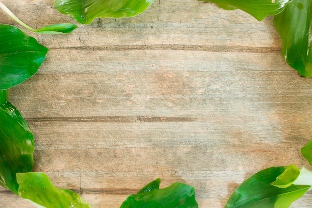 Le plancher de bois est entouré de feuilles vertes d'herbes.