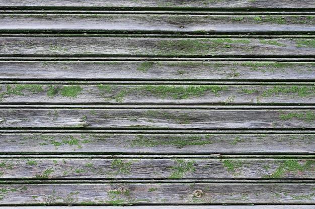 Des planches de bois ont fleuri. vieilles planches. mise à plat.