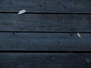 Des planches de bois sombre, désespérée