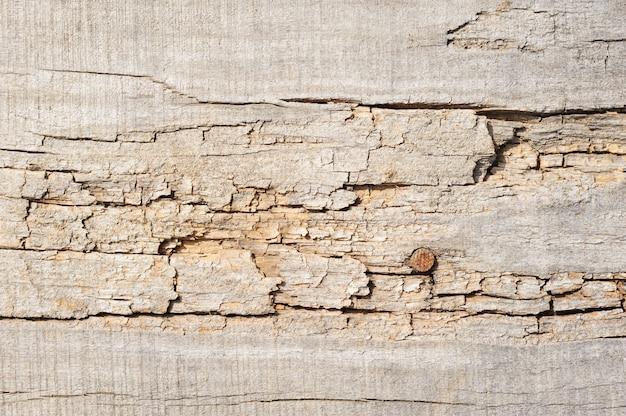 Planches de bois, texture avec motif naturel