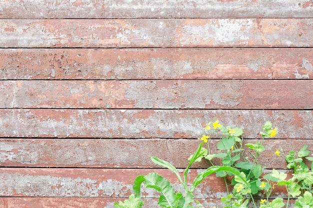 Planches vintage horizontales teinte rouge-gris, fleurs de chélidoine en bas du cadre