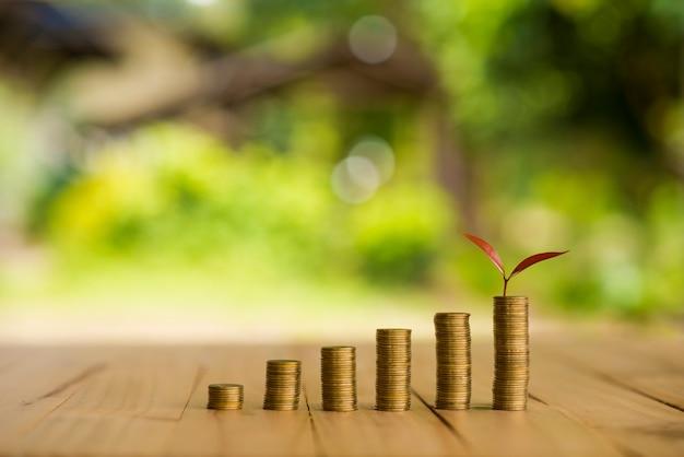 Plant croissant sur la rangée de l'argent de pièce de monnaie, csr dans les affaires