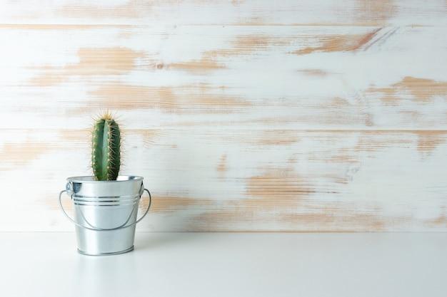 Plante de cactus en pot sur fond de bois