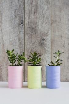 Plante de culture fraîche dans trois canettes de recyclage peintes sur un bureau blanc contre un mur en bois