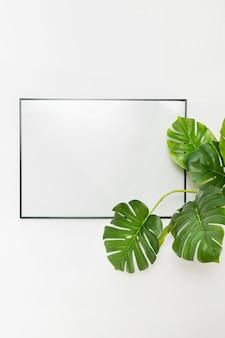 Plante décorative avec cadre vide