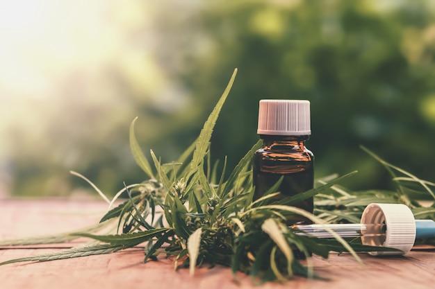 Plante et feuilles de cannabis avec extraits d'huile dans des bocaux. concept médical