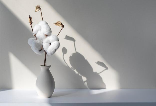 Plante à fleurs de coton dans un vase en céramique dans un bureau ou une étagère blanc ombres et silhouettes sur le mur