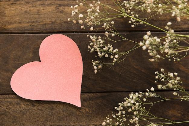 Plante avec des fleurs près du symbole du coeur