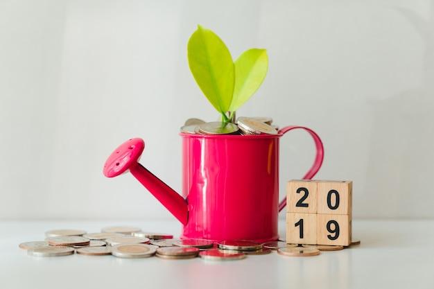 Plante et pièces de monnaie dans un arrosoir avec l'année 2019 en utilisant comme concept de croissance financière et d'entreprise