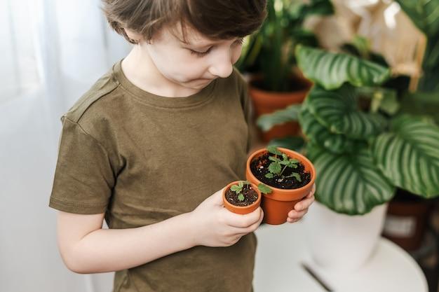 Plante en pot de jardiniers pour enfants