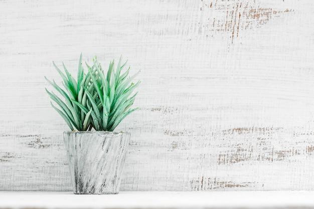 Plante en pot de style loft sur une étagère devant un mur en bois blanc grunge