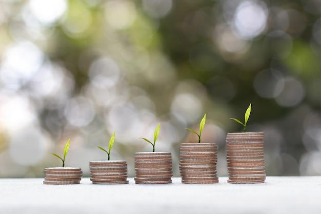Plante poussant sur une pile de pièces d'argent. concept d'économie d'argent. financer le développement durable