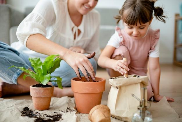 Plante de rempotage pour enfants à la maison comme passe-temps