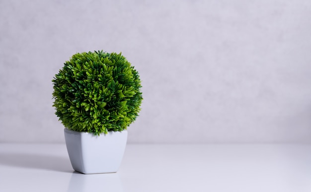 Plante succulente artificielle dans un pot en céramique sur le comptoir à côté du mur.