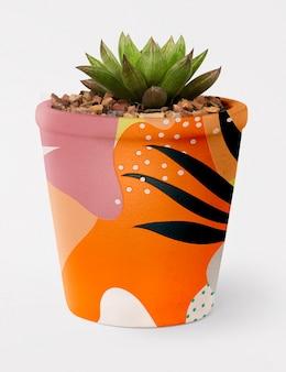 Plante succulente dans un pot de memphis
