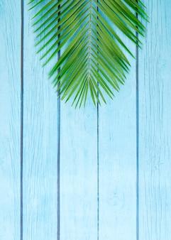 Plante tropicale sur plancher en bois bleu
