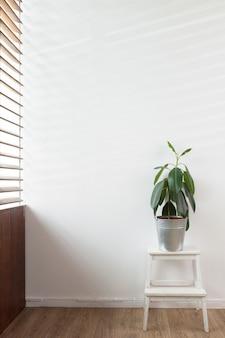 Plante verte dans un vase décoré pour la chambre