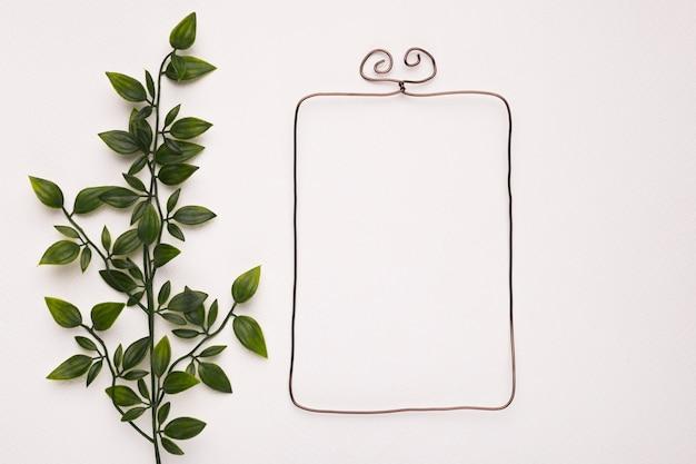 Plante verte laisse près du cadre vide isolé sur fond blanc