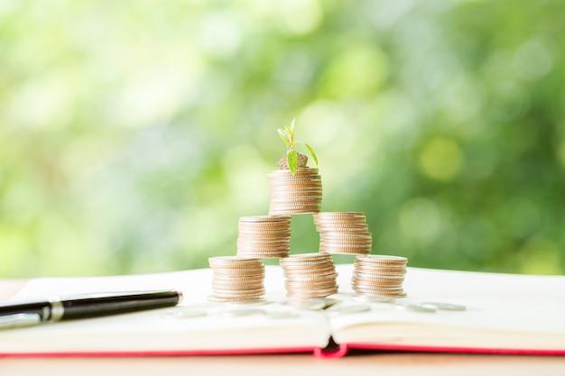 Planter des arbres sur une pile de monnaie avec la lumière du soleil