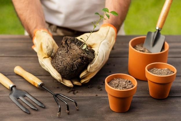 Planter des fleurs en pots