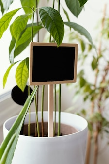Planter en pot avec signe à l'intérieur