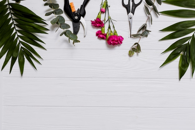 Plantes et articles de fleuriste