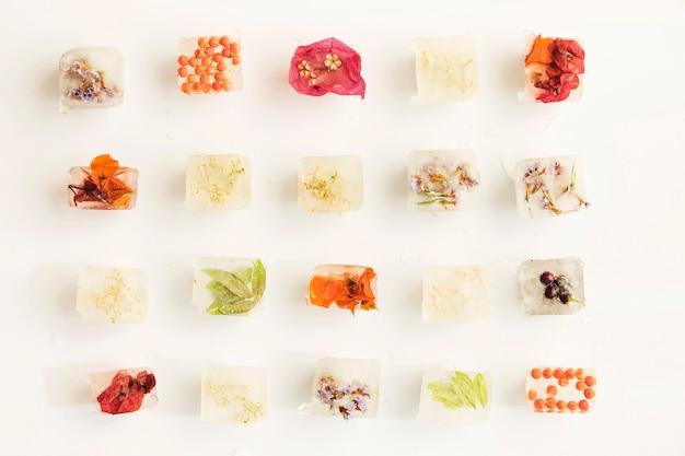Plantes, baies et fleurs en cubes de glace