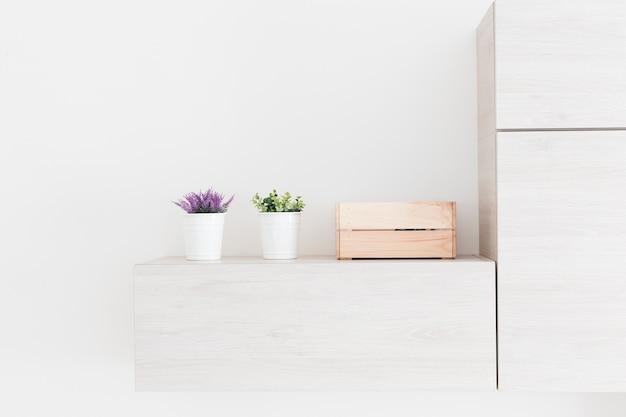 Plantes et boîte près du réfrigérateur