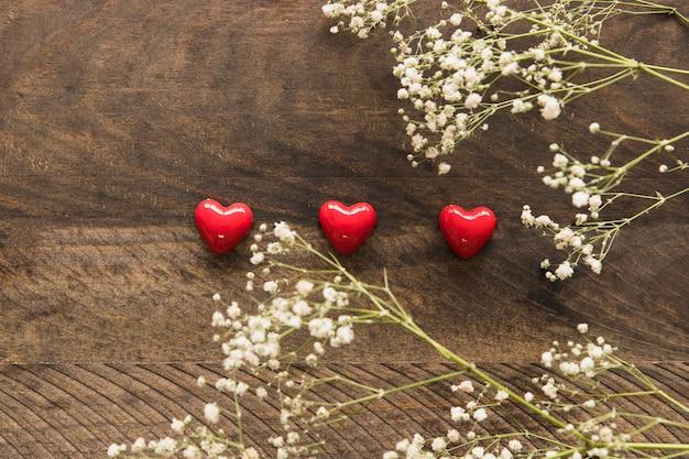 Plantes avec des fleurs près de l'ensemble d'ornement petits coeurs vineux